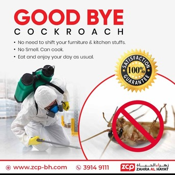 Manama, Pest Control, Effective Pest Control Services - Specialist In Cockroach Control - Money Back Guarantee